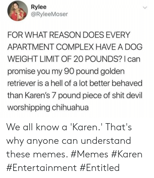 Hell Of A: Rylee  @RyleeMoser  FOR WHAT REASON DOES EVERY  APARTMENT COMPLEX HAVE A DOG  WEIGHT LIMIT OF 20 POUNDS? I can  promise you my 90 pound golden  retriever is a hell of a lot better behaved  than Karen's 7 pound piece of shit devil  worshipping chihuahua We all know a 'Karen.' That's why anyone can understand these memes. #Memes #Karen #Entertainment #Entitled