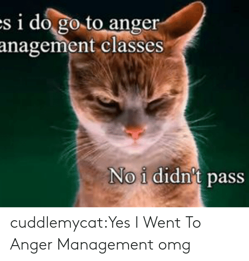 Anger Management: s i do go to anger  anagement classes  No i didn't pass cuddlemycat:Yes I Went To Anger Management omg