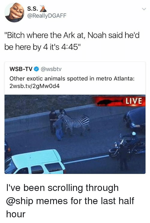 "halfs: S.S  @ReallyDGAFF  ""Bitch where the Ark at, Noah said he'd  be here by 4 it's 4:45""  WSB-TV @wsbtv  Other exotic animals spotted in metro Atlanta:  2wsb.tv/2gMwOd4  LIVE I've been scrolling through @ship memes for the last half hour"