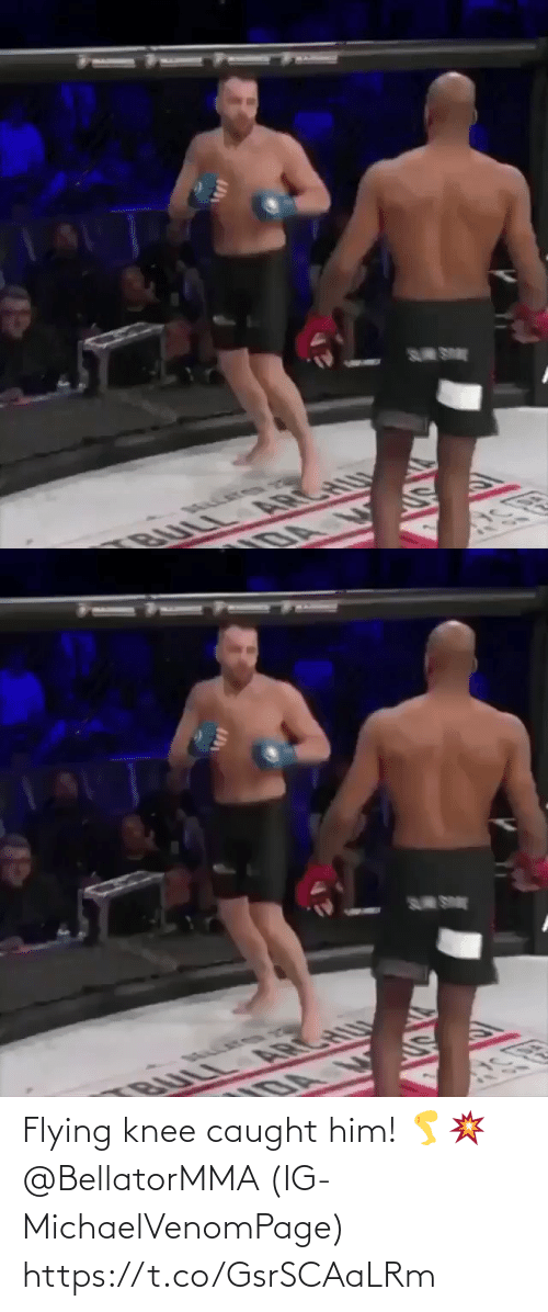 Caught: S SE  BULL ARCHU  DA   S SE  U  BULL A CH Flying knee caught him! 🦵💥 @BellatorMMA (IG-MichaelVenomPage) https://t.co/GsrSCAaLRm