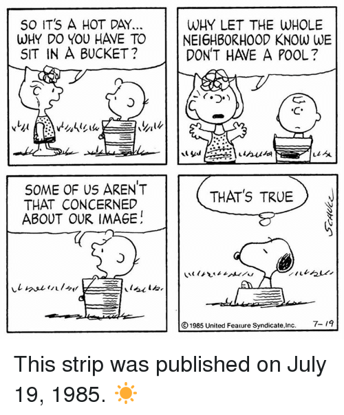 Memes, True, and Image: S0 IT'S A HOT DAY.  WHY DO YOU HAVE TO  SIT IN A BUCKET?  WHY LET THE WHOLE  NEIGHBORHOOD KNOW WE  DON'T HAVE A POOL?  11 싯  SOME OF Us AREN'T  THAT CONCERNED  ABOUT OUR IMAGE  THAT's TRUE  ⓒ1985 United Feature Syndicate,Inc.  7-19 This strip was published on July 19, 1985. ☀️