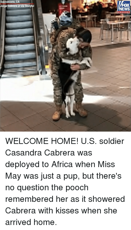 Sacramento: Sacramento, CA  Jorge Cabrera Jr via Storyful  FOX  NEWS  channel WELCOME HOME! U.S. soldier Casandra Cabrera was deployed to Africa when Miss May was just a pup, but there's no question the pooch remembered her as it showered Cabrera with kisses when she arrived home.