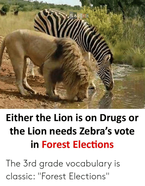 """Drugs, Lion, and Terrible Facebook: SADCASM  Either the Lion is on Drugs or  the Lion needs Zebra's vote  in Forest Elections The 3rd grade vocabulary is classic: """"Forest Elections"""""""