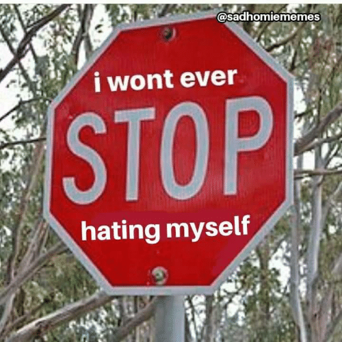 Stop, Myself, and Ever: @sadhomiememes  i wont ever  STOP  hating myself