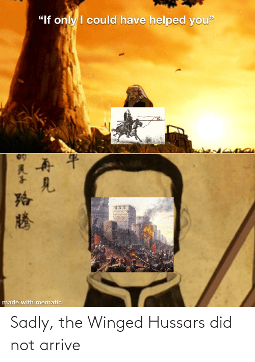 sadly: Sadly, the Winged Hussars did not arrive