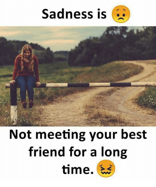 Best Friend, Memes, and Best: Sadness is  Not meeting your best  friend for a long  time.
