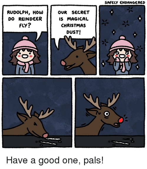 Christmas, Memes, and Good: SAFELY ENDANGERED  RUDOLPH, HOW  DO REINDEER  FLY?  OUR SECRET  IS MAGICAL  CHRISTMAS  DUST! Have a good one, pals!