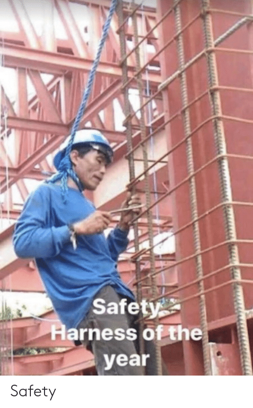 Safety Harness,  Year, and Safety: Safety  Harness of the  year Safety