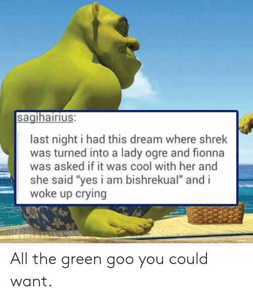 """I Woke Up: sagihairius:  last night i had this dream where shrek  was turned into a lady ogre and fionna  was asked if it was cool with her and  she said """"yes i am bishrekual"""" and i  woke up crying All the green goo you could want."""