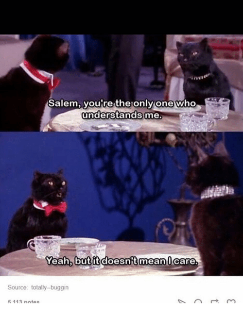 Memes, Yeah, and Only One: Salem, you're the only one who  understands me.  Yeah, butitdoesnitmean U care  Source totallybuggin