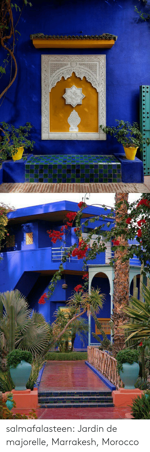 Tumblr, Blog, and Http: salmafalasteen: Jardin de majorelle, Marrakesh, Morocco