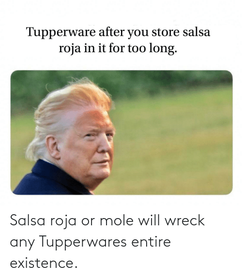 existence: Salsa roja or mole will wreck any Tupperwares entire existence.