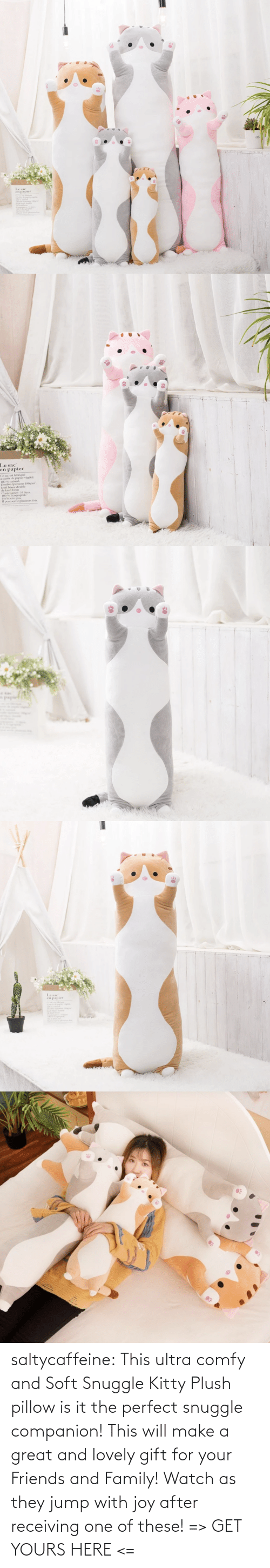 pillow: saltycaffeine: This ultra comfy and Soft Snuggle Kitty Plush pillow is it the perfect snuggle companion! This will make a great and lovely gift for your Friends and Family! Watch as they jump with joy after receiving one of these! => GET YOURS HERE <=