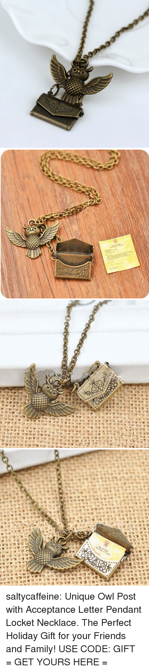 Family, Friends, and Target: saltycaffeine: Unique Owl Post with Acceptance Letter Pendant Locket Necklace. The Perfect Holiday Gift for your Friends and Family! USE CODE: GIFT = GET YOURS HERE =