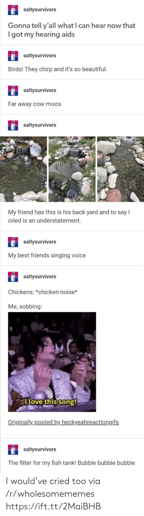 cow: saltysurvivors  Gonna tell y'all what I can hear now that  got my hearing aids  saltysurvivors  Birds! They chirp and it's so beautiful.  saltysurvivors  Far away cOw moos  saltysurvivors  My friend has this is his back yard and to say  cried is an understatement.  saltysurvivors  My best friends singing voice  saltysurvivors  Chickens: *chicken noise*  Me, sobbing:  Tlove this song!  Originally posted by heckyeahreactiongifs  saltysurvivors  The filter for my fish tank! Bubble bubble bubble I would've cried too via /r/wholesomememes https://ift.tt/2MaiBHB