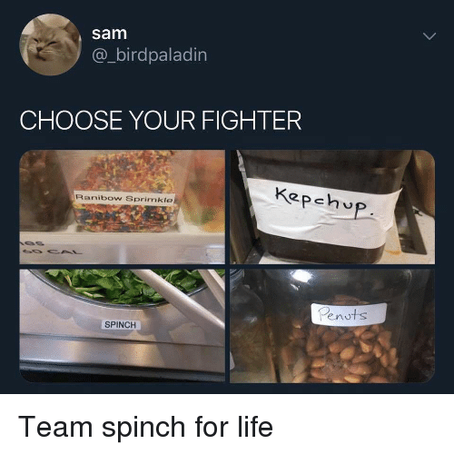Choose Your Fighter: sam  @_birdpaladin  CHOOSE YOUR FIGHTER  Kepehv  Ranibow Sprimkle  Penuts  SPINCH Team spinch for life