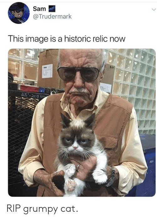 Grumpy Cat, Image, and Cat: Sam  @Trudermark  This image is a historic relic now  25'-250 RIP grumpy cat.