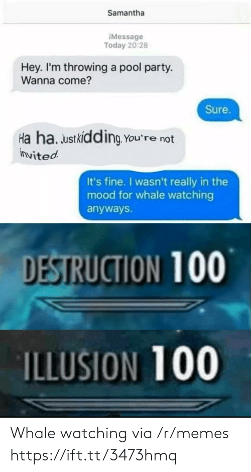 whale: Samantha  IMessage  Today 20:28  Hey. I'm throwing a pool party.  Wanna come?  Sure.  Ha ha. Justkidding You're not  invited  It's fine. I wasn't really in the  mood for whale watching  anyways.  DESTRUCTION 100  ILLUSION 100 Whale watching via /r/memes https://ift.tt/3473hmq