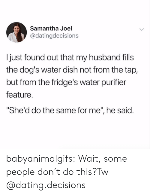 """Dating, Dogs, and Tumblr: Samantha Joel  @datingdecisions  I just found out that my husband fills  the dog's water dish not from the tap,  but from the fridge's water purifier  feature.  She'd do the same for me"""", he said. babyanimalgifs:  Wait, some people don't do this?Tw @dating.decisions"""
