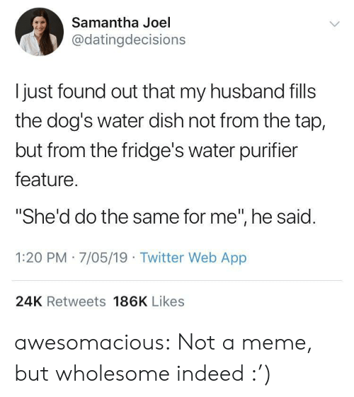 "Dogs, Meme, and Tumblr: Samantha Joel  @datingdecisions  l just found out that my husband fills  the dog's water dish not from the tap,  but from the fridge's water purifier  feature  ""She'd do the same for me"", he said  1:20 PM 7/05/19 Twitter Web App  24K Retweets 186K Likes awesomacious:  Not a meme, but wholesome indeed :')"