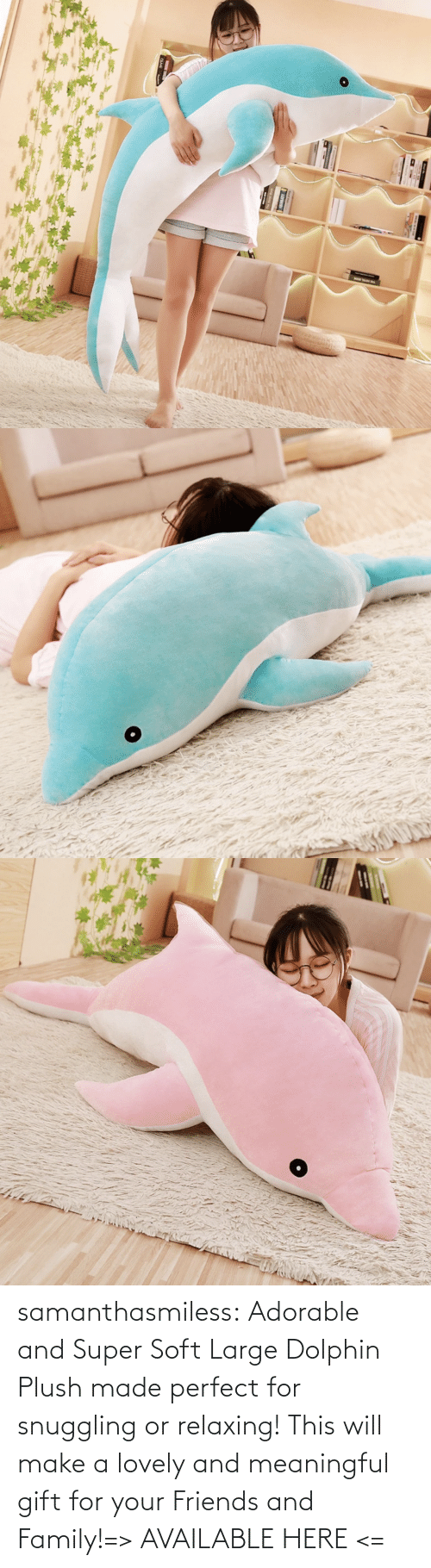 Dolphin: samanthasmiless:  Adorable and Super Soft Large Dolphin Plush made perfect for snuggling or relaxing! This will make a lovely and meaningful gift for your Friends and Family!=> AVAILABLE HERE <=