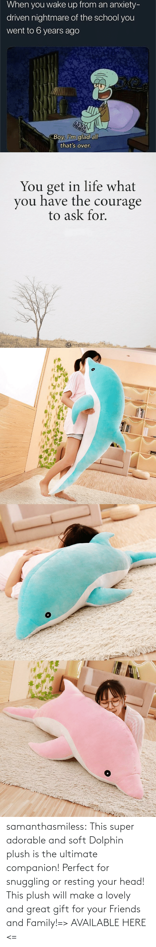 Dolphin: samanthasmiless:  This super adorable and soft Dolphin plush is the ultimate companion! Perfect for snuggling or resting your head! This plush will make a lovely and great gift for your Friends and Family!=> AVAILABLE HERE <=