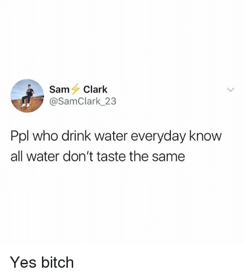 Bitch, Water, and Girl Memes: SamClark  @SamClark_23  Ppl who drink water everyday know  all water don't taste the same Yes bitch