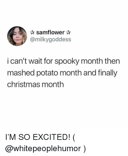 Christmas, Potato, and Girl Memes: samflower  @milkygoddess  i can't wait for spooky month then  mashed potato month and finally  christmas month I'M SO EXCITED! ( @whitepeoplehumor )