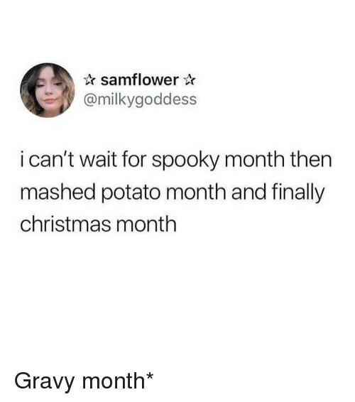 Christmas, Funny, and Potato: samflower  @milkygoddess  i can't wait for spooky month then  mashed potato month and finally  christmas month Gravy month*