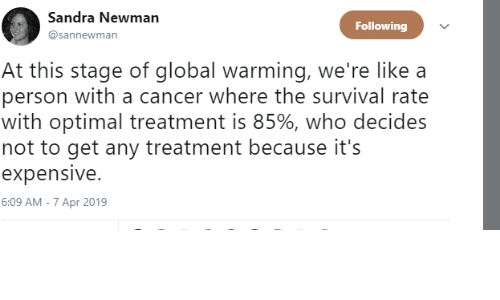 Newman: Sandra Newman  @sannewman  Following  At this stage of qglobal warming, we're like a  person with a cancer where the survival rate  with optimal treatment is 85%, who decides  not to get any treatment because it's  expensive.  6:09 AM - 7 Apr 2019