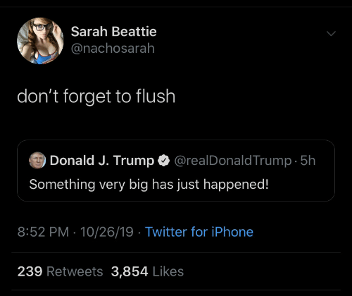 J Trump: Sarah Beattie  @nachosarah  don't forget to flush  @realDonaldTrump 5h  Donald J. Trump  Something very big has just happened!  8:52 PM 10/26/19 Twitter for iPhone  239 Retweets 3,854 Likes