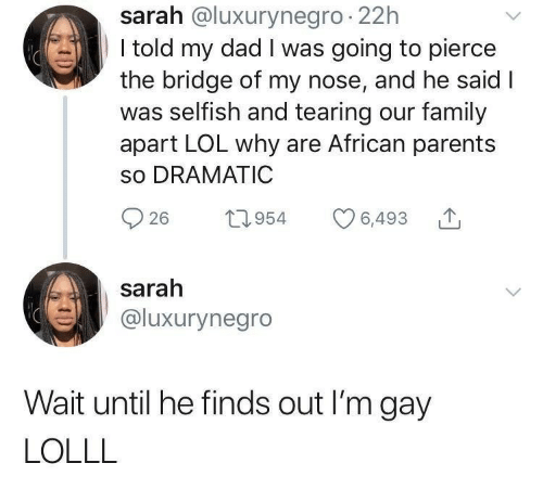 Dad, Family, and Lol: sarah @luxurynegro 22h  I told my dad I was going to pierce  the bridge of my nose, and he said I  was selfish and tearing our family  apart LOL why are African parents  so DRAMATIC  26 t954 6,493  sarah  @luxurynegro  Wait until he finds out I'm gay  LOLLL