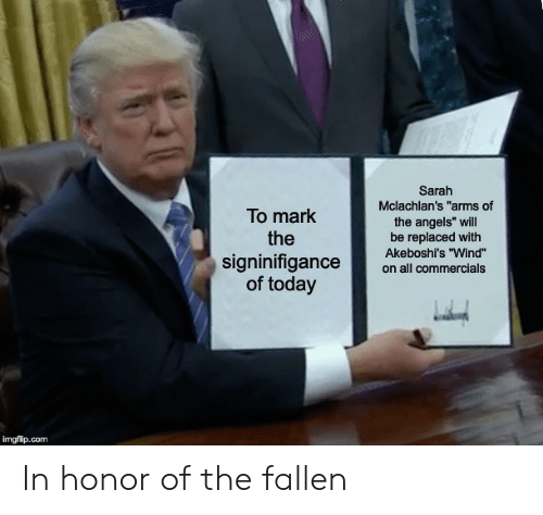 """Angels, Today, and Dank Memes: Sarah  Mclachlan's """"arms of  To mark  the  the angels"""" will  be replaced with  Akeboshi's """"Wind""""  signinifigance  of today  on all commercials  imgflip.com In honor of the fallen"""