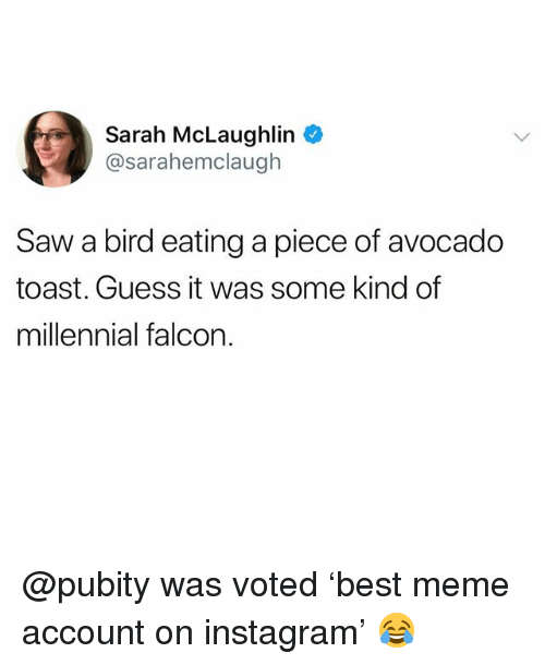 Funny, Instagram, and Meme: Sarah McLaughlin  @sarahemclaugh  Saw a bird eating a piece of avocado  toast. Guess it was some kind of  millennial falcon @pubity was voted 'best meme account on instagram' 😂