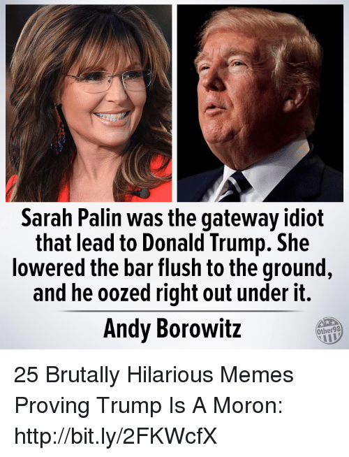 Donald Trump, Memes, and Sarah Palin: Sarah Palin was the gateway idiot  that lead to Donald Trump. She  lowered the bar flush to the ground  and he oozed right out under it.  Andy Borowitz  Other98 25 Brutally Hilarious Memes Proving Trump Is A Moron: http://bit.ly/2FKWcfX