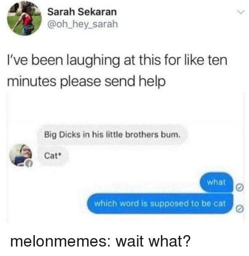 Little Brothers: Sarah Sekaran  @oh hey_sarah  I've been laughing at this for like ten  minutes please send help  Big Dicks in his little brothers bum.  Cat  what  which word is supposed to be cat melonmemes:  wait what?