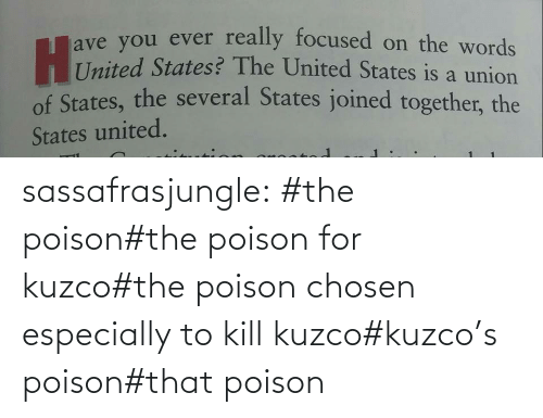 tag: sassafrasjungle:  #the poison#the poison for kuzco#the poison chosen especially to kill kuzco#kuzco's poison#that poison