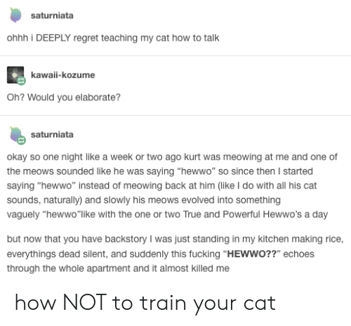 """Fucking, Regret, and True: saturniata  ohhh i DEEPLY regret teaching my cat how to talk  kawaii-kozume  Oh? Would you elaborate?  saturniata  okay so one night like a week or two ago kurt was meowing at me and one of  the meows sounded like he was saying """"hewwo"""" so since then I started  saying """"hewwo"""" instead of meowing back at him (like I do with all his cat  sounds, naturally) and slowly his meows evolved into something  vaguely """"hewwo""""like with the one or two True and Powerful Hewwo's a day  but now that you have backstory I was just standing in my kitchen making rice,  everythings dead silent, and suddenly this fucking """"HEWWO??"""" echoes  through the whole apartment and it almost killed me how NOT to train your cat"""