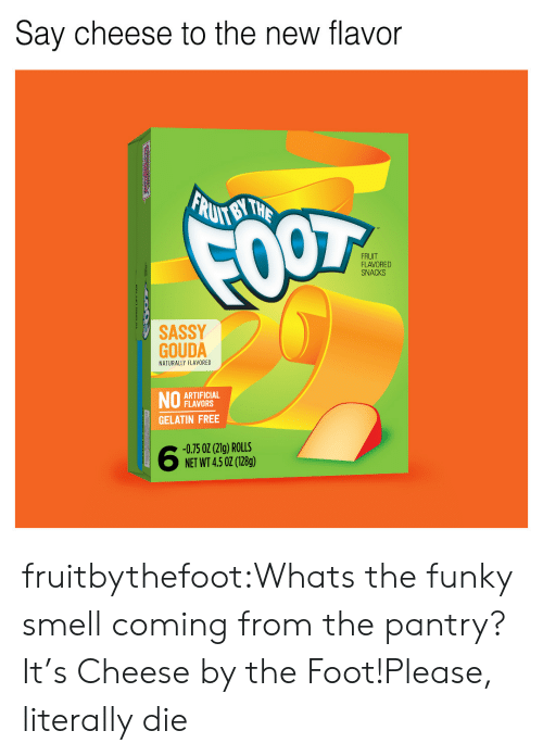 say cheese: Say cheese to the new flavor  FRUIT  FLAVORED  SNACKS  SASSY  GOUDA  NATURALLY FLAVORED  ARTIFICIAL  FLAVORS  GELATIN FREE  -0.75 02 (21g) ROLLS  NET WT 4.5 02 (128g) fruitbythefoot:Whats the funky smell coming from the pantry? It's Cheese by the Foot!Please, literally die