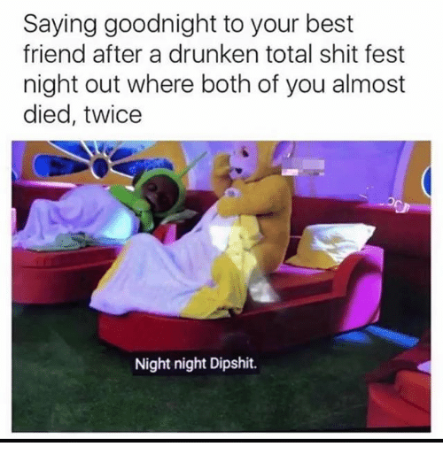 Best Friend, Memes, and Shit: Saying goodnight to your best  friend after a drunken total shit fest  night out where both of you almost  died, twice  Night night Dipshit.