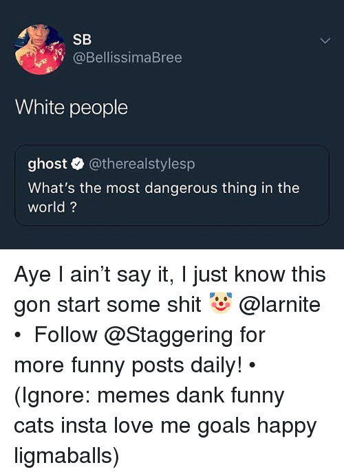 Cats, Dank, and Funny: SB  @BellissimaBree  White people  ghost @therealstylesp  What's the most dangerous thing in the  world? Aye I ain't say it, I just know this gon start some shit 🤡 @larnite • ➫➫➫ Follow @Staggering for more funny posts daily! • (Ignore: memes dank funny cats insta love me goals happy ligmaballs)