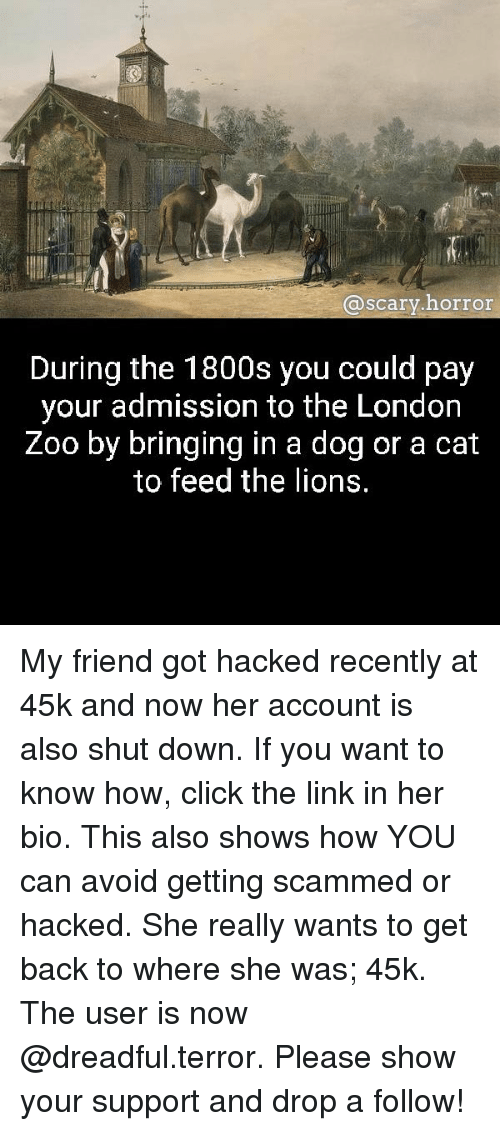 Click, Memes, and Link: @scarv.horror  @scary.horror  During the 1800s you could pay  your admission to the London  Zoo by bringing in a dog or a cat  to feed the lions My friend got hacked recently at 45k and now her account is also shut down. If you want to know how, click the link in her bio. This also shows how YOU can avoid getting scammed or hacked. She really wants to get back to where she was; 45k. The user is now @dreadful.terror. Please show your support and drop a follow!