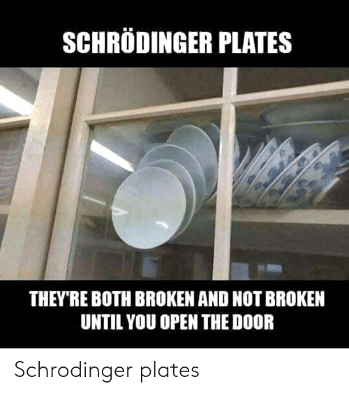 Open The Door: SCHRODINGER PLATES  THEY'RE BOTH BROKEN AND NOT BROKEN  UNTIL YOU OPEN THE DOOR Schrodinger plates