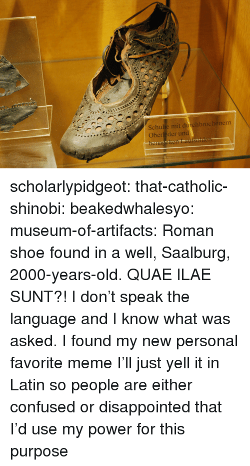 Confused, Disappointed, and Meme: Schulie mit durchbrochenem  Oberleder und scholarlypidgeot:  that-catholic-shinobi: beakedwhalesyo:   museum-of-artifacts:    Roman shoe found in a well, Saalburg, 2000-years-old.    QUAE ILAE SUNT?!   I don't speak the language and I know what was asked.   I found my new personal favorite memeI'll just yell it in Latin so people are either confused or disappointed that I'd use my power for this purpose