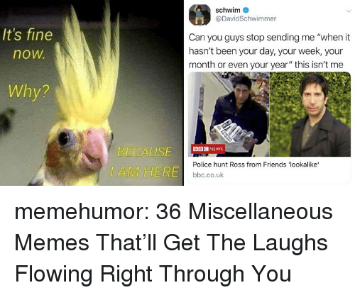 """Friends, Memes, and News: schwim  @DavidSchwimmer  It's fine  now  Can you guys stop sending me """"when it  hasn't been your day, your week, your  month or even your year"""" this isn't me  Why?  ECAUSEG NEWS  IAMHERE  Police hunt Ross from Friends 'lookalike  bbc.co.uk memehumor:  36 Miscellaneous Memes That'll Get The Laughs Flowing Right Through You"""