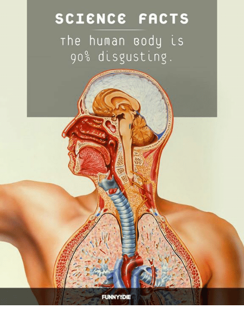 Dank, Facts, and Funny: SCIENCE FACTS  The human Body is  90% disgusting.  FUNNY DIE