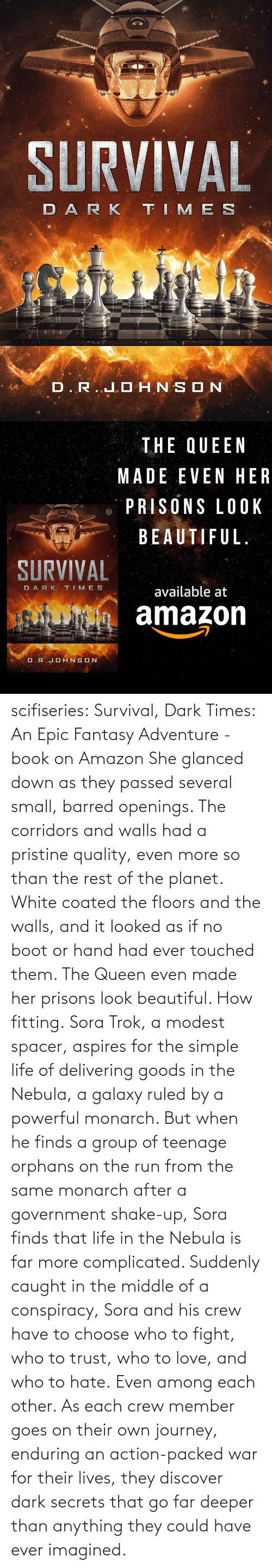 White: scifiseries: Survival, Dark Times: An Epic Fantasy Adventure - book on Amazon  She glanced down as they  passed several small, barred openings. The corridors and walls had a  pristine quality, even more so than the rest of the planet. White coated  the floors and the walls, and it looked as if no boot or hand had ever  touched them.  The Queen even made her prisons look beautiful.  How fitting. Sora  Trok, a modest spacer, aspires for the simple life of delivering goods  in the Nebula, a galaxy ruled by a powerful monarch. But when he finds a  group of teenage orphans on the run from the same monarch after a  government shake-up, Sora finds that life in the Nebula is far more complicated.  Suddenly  caught in the middle of a conspiracy, Sora and his crew have to choose  who to fight, who to trust, who to love, and who to hate. Even among each other.  As  each crew member goes on their own journey, enduring an action-packed  war for their lives, they discover dark secrets that go far deeper than  anything they could have ever imagined.
