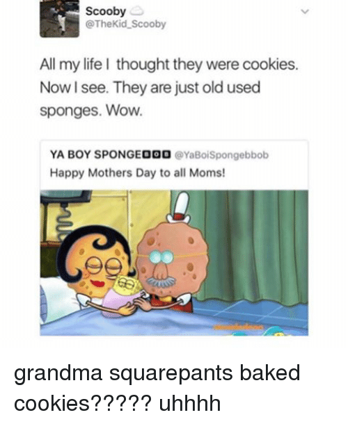 Baked, Cookies, and Grandma: Scooby  @The Kid Scooby  All my life I thought they were cookies.  Now I see. They are just old used  sponges. Wow.  YA BOY SPOINGEOOO  YaBoiSpongebbob  Happy Mothers Day to all Moms! grandma squarepants baked cookies????? uhhhh