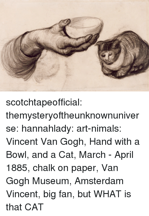 Tumblr, Vincent Van Gogh, and Amsterdam: scotchtapeofficial:  themysteryoftheunknownuniverse:  hannahlady:  art-nimals: Vincent Van Gogh, Hand with a Bowl, and a Cat, March - April 1885, chalk on paper, Van Gogh Museum, Amsterdam  Vincent, big fan, but WHAT is that CAT