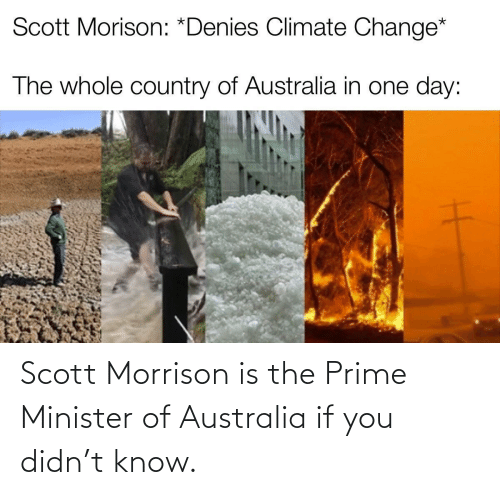 If You: Scott Morrison is the Prime Minister of Australia if you didn't know.